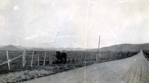 Somewhere in CO 1932